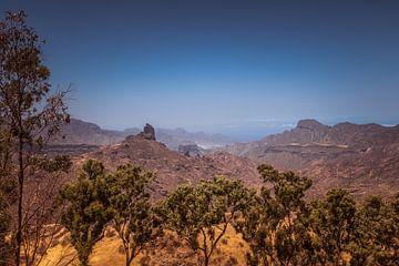 Gran Canaria - die schöne Bergen von Helga van de Kar