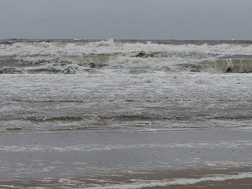 aan zee von addy de meij