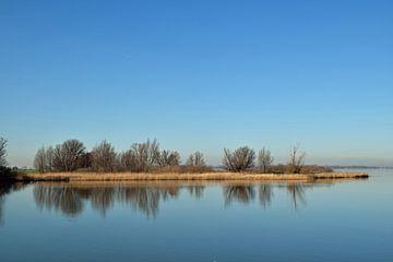 Achtergrond met reflecties van een eiland met bomen van R Verhoef