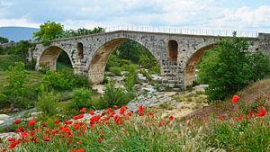 Pont Julien en arche romaine en pierre sur le Calavon près d'Apt (France) avec au premier plan un ch