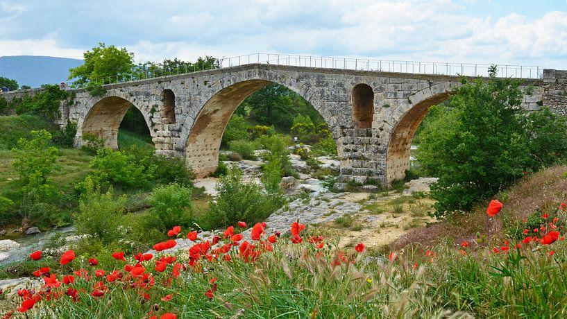 Pont Julien en arche romaine en pierre sur le Calavon près d'Apt (France) avec au premier plan un ch sur Gert Bunt