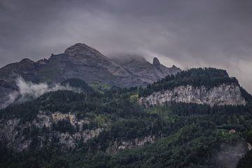 Sturm auf dem Weg dorthin von Sasja van der Grinten