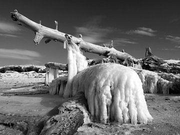 Eisriesen – Darß Weststrand im Winter 2018 von Jörg Hausmann