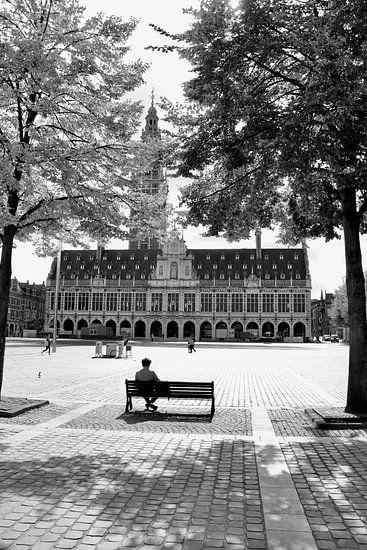 Mijn Leuven, mijn inspiratie van Nina Rotim