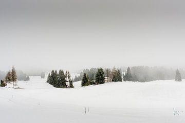 Een dal in de sneeuw en in de mist van Tony Buijse
