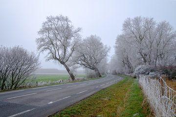 Im Winter beschichtet von Johan Vanbockryck