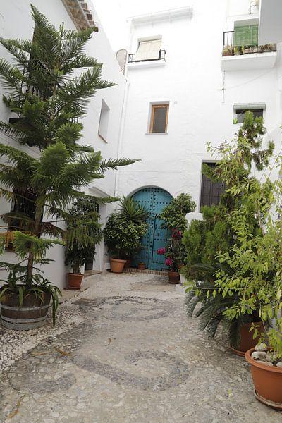 Een Spaans hofje met veel planten van Cora Unk