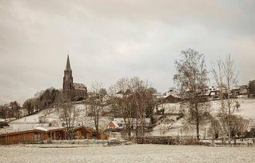 Vijlen winter 2016 van John Kreukniet