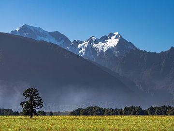 Een blik op Mount Cook vanuit Lake Matheson van Rik Pijnenburg