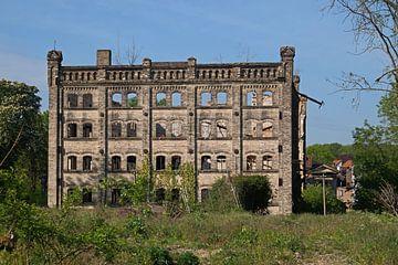 Ruine des Speichers des Mühlenkomplexes Böllberg in Halle in Deutschland von Babetts Bildergalerie