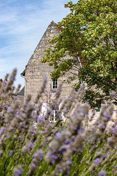 Scene in Crissay Sur Manse, village in the Loire Valley von Fotografiecor .nl