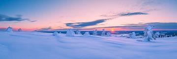 Winter wonderland van Denis Feiner