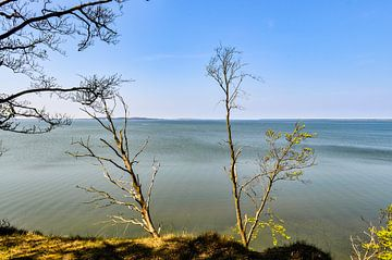 Haute côte près de Lietzow, Grand Jasmund Bodden sur GH Foto & Artdesign