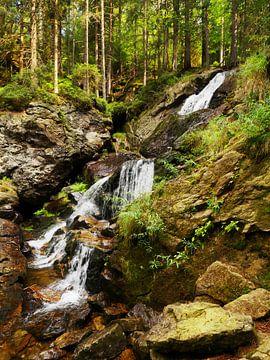 Riesloch watervallen bij Bodenmais, Beieren 13 van Jörg Hausmann