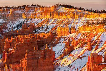Wintersonnenaufgang im Bryce Canyon N.P., Utah