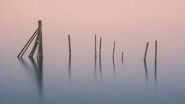 Paaltjes in het water in de Hopfensee, Duitsland. van Henk Meijer Photography