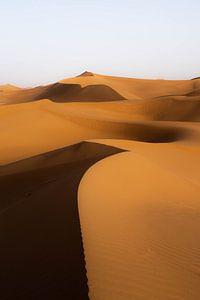 Sahara °11 sur Jesse Barendregt