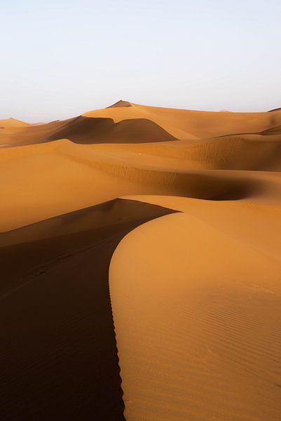 Sahara °11 von Jesse Barendregt