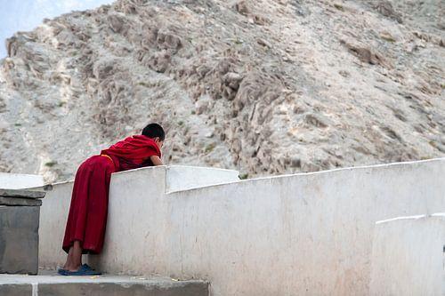 Monnikje zoekt vertier vanaf het dak van het klooster