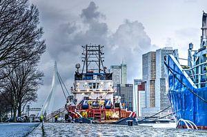 Rotterdam: bruggen, boten en hoge gebouwen van