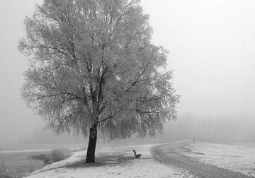 Winter landschap van Johan  van Polen
