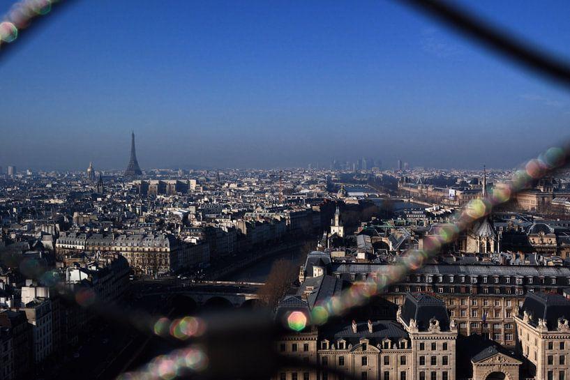 Parijs van Erik Reijnders