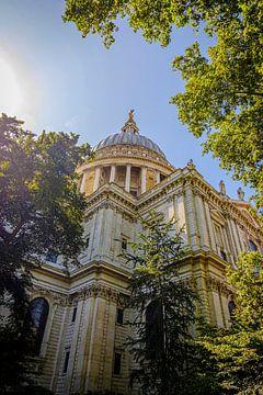 St Paul's Cathedral in Londen | Straatfotografie van Diana van Neck Photography