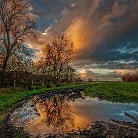 Water in de sloot.... van Robin Pics (verliefd op Utrecht)