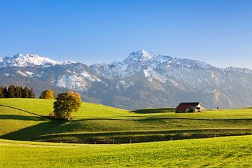 Allgäu  im Herbst, Bayern, Deutschland von Markus Lange