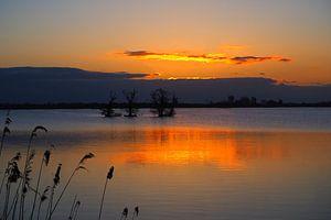 Serenity at 'De Leyen' during sunrise