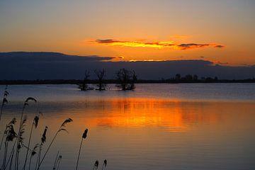 Serenity at 'De Leyen' during sunrise sur Wilco Berga