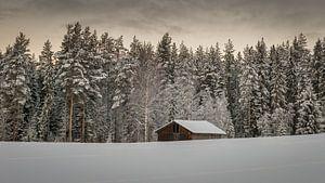 Verlaten schuur in de sneeuw van