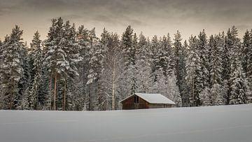Verlaten schuur in de sneeuw van Jacco Bezuijen