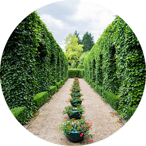 Doorgang in België door het groen van Joyce Schouten
