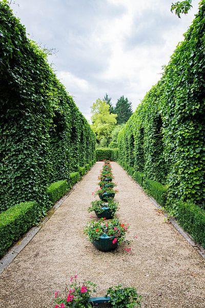 Passage en Belgique à travers la verdure sur Joyce Schouten