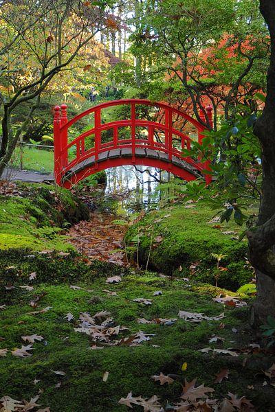 De Japanse tuin op landgoed Clingendael van Wilco Berga