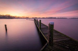 Purple sunrise van
