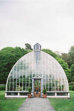 Botanisches Gewächshaus in Irland von Hanke Arkenbout
