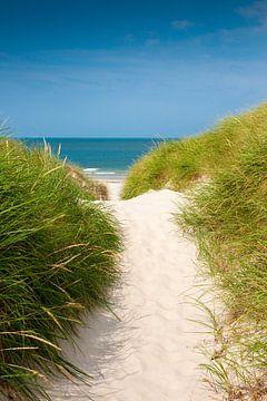 Nordsee Strandweg von Reiner Würz / RWFotoArt