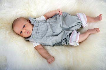 Baby von BVpix