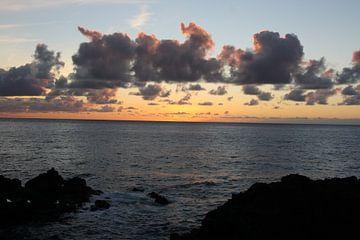 zon opkomst von Rick Van der bijl