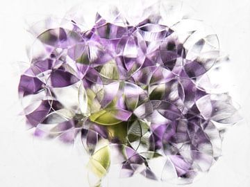 oignon violet abstrait sur Marjolijn van den Berg