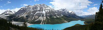 Peyto Lake von Jeroen Keijzer