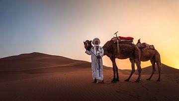 Berber met zijn kamelen van
