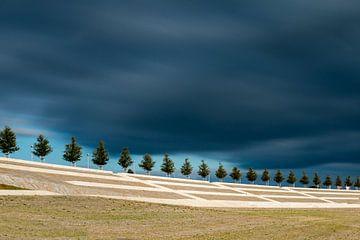 Donkere lucht boven Lent von Maerten Prins