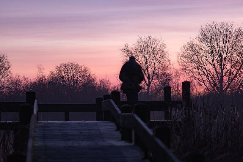 roze lucht van Tania Perneel