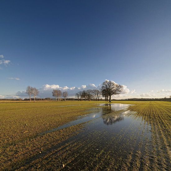 Follow the water van Martijn Schornagel