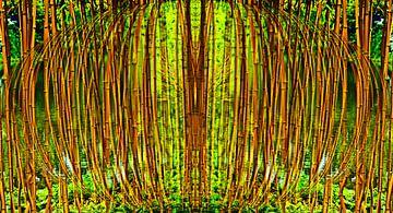 bamboebos van CreaBrig Fotografie