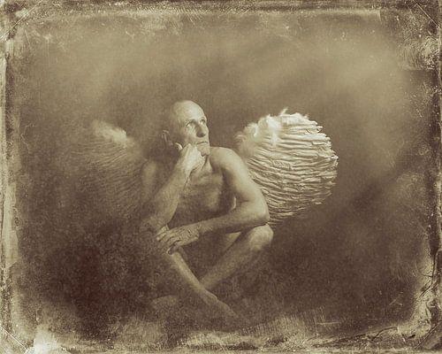 Engel 4 van