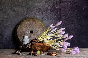 Blumenstrauss mit Herbstkrokus von Affect Fotografie